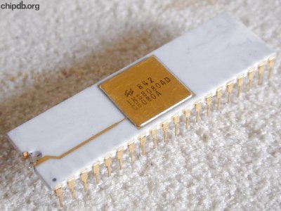National Semiconductor INS8080AD C8080A white groundstrap
