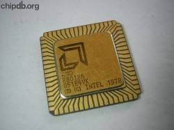 AMD R80186 big logo 2